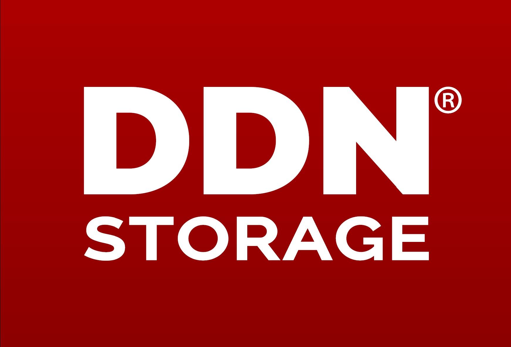 Logo DDN Storage